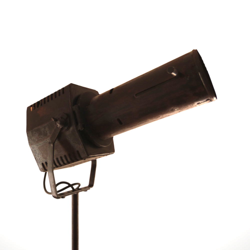 narva longnose spotlight